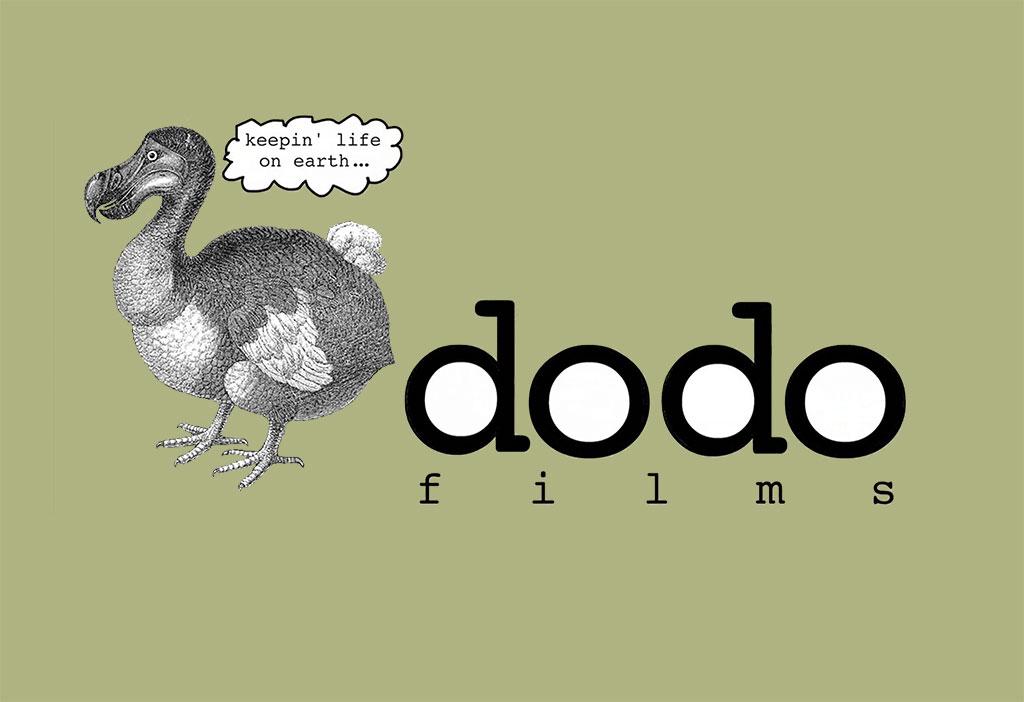 dodo films animated logo